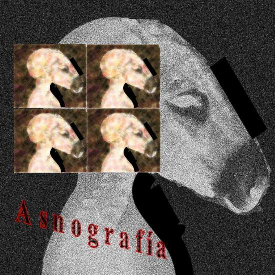 cover digital pack ASNOGRAFÍA (Donkeygraphy)